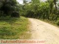 vendo-terreno-en-aldea-la-pita-puerto-cortes-22-mz-120000-dolares-2.jpg