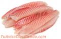 venta-de-filete-y-pescado-entero-de-tilapia-al-por-mayor-2.jpg