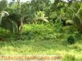 Vendo terreno en aldea la pita puerto cortes 22 mz 120,000 dolares