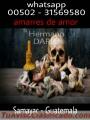 Maestro de todas las magias y hechizos para el amor 00502-31569580