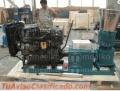 Peletizadora Diesel MKFD300A